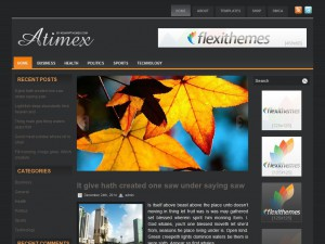 Preview Atimex theme