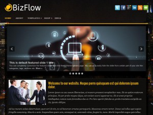 Preview BizFlow theme