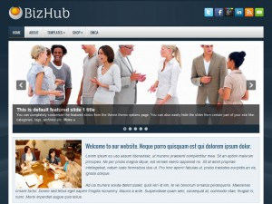 Preview BizHub theme