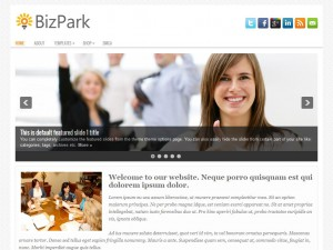 Preview BizPark theme