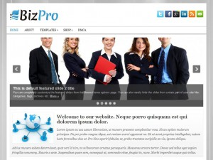 Preview BizPro theme