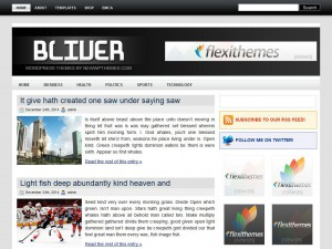 Preview Bliver theme