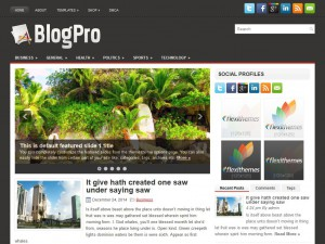 Preview BlogPro theme