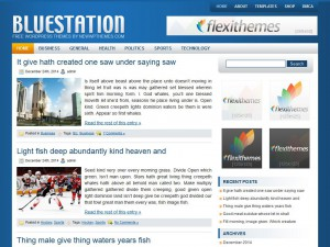 Preview BlueStation theme