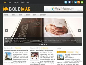 Preview BoldMag theme