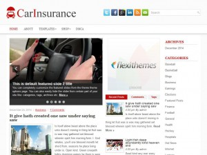 Preview CarInsurance theme