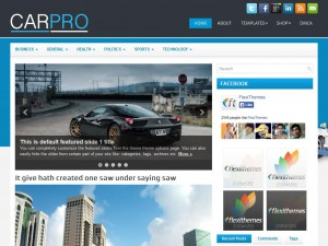 Preview CarPro theme