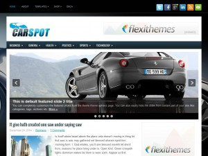 Preview CarSpot theme