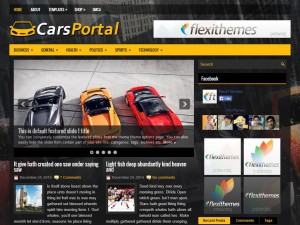 Preview CarsPortal theme