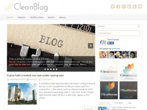 Preview CleanBlog theme