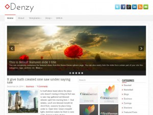 Preview Denzy theme