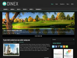 Preview Dinex theme