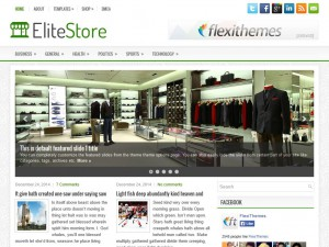 Preview EliteStore theme