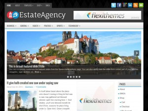 Preview EstateAgency theme