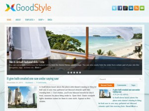 Preview GoodStyle theme