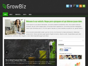 Preview GrowBiz theme