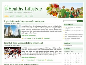 Preview HealthyLifestyle theme