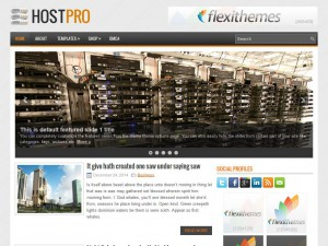 Preview HostPro theme