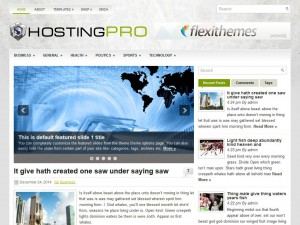 Preview HostingPro theme