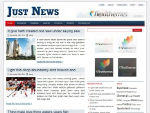Preview JustNews theme