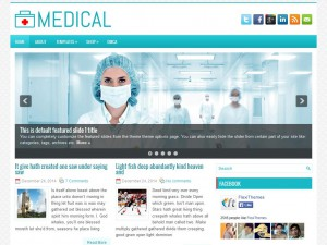 Preview Medical theme