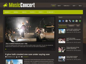 Preview MusicConcert theme