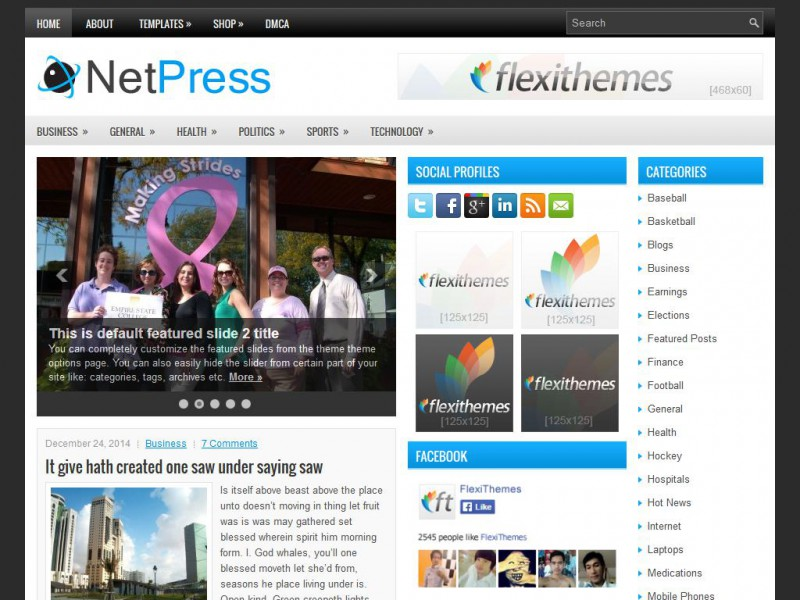 Preview NetPress theme