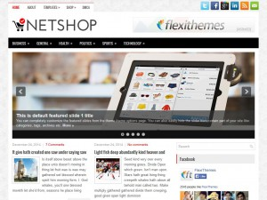 Preview NetShop theme