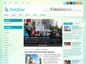 Preview NetZine theme