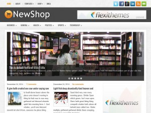 Preview NewShop theme