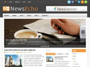 Preview NewsEcho theme