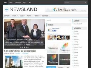 Preview NewsLand theme