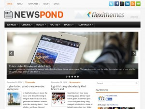 Preview NewsPond theme