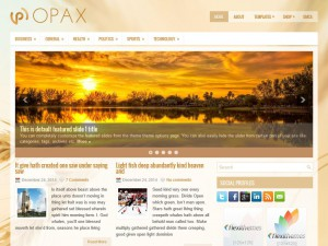 Preview Opax theme