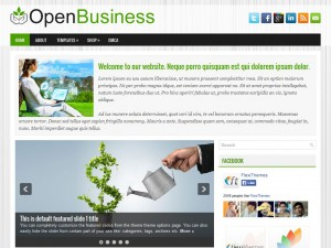 Preview OpenBusiness theme