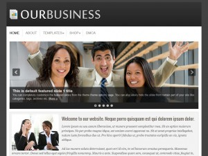 Preview OurBusiness theme