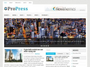 Preview ProPress theme