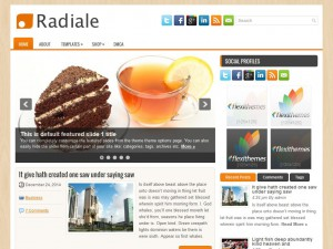 Preview Radiale theme