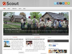 Preview Scout theme