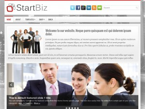 Preview StartBiz theme