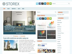 Preview Storex theme