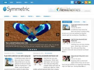 Preview Symmetric theme