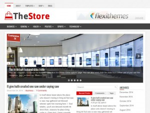 Preview TheStore theme