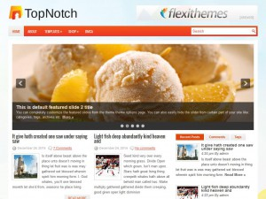 Preview TopNotch theme