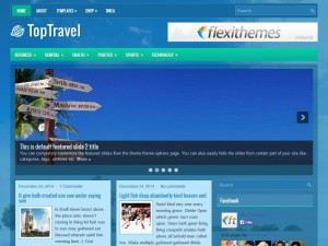 Preview TopTravel theme