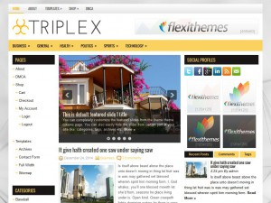 Preview Triplex theme