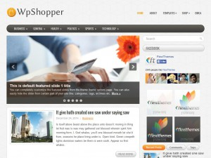 Preview WpShopper theme