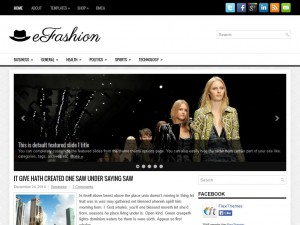 Preview eFashion theme