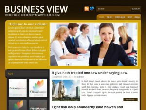 Preview BusinessView theme