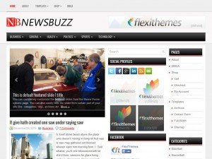 Preview NewsBuzz theme